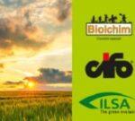 main_banner_news_ilsa1